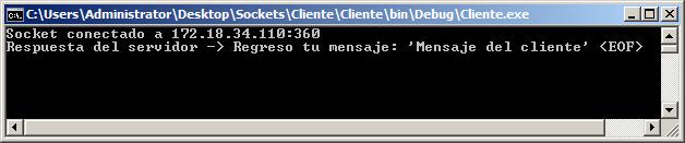 Consola ejecutando la aplicación cliente